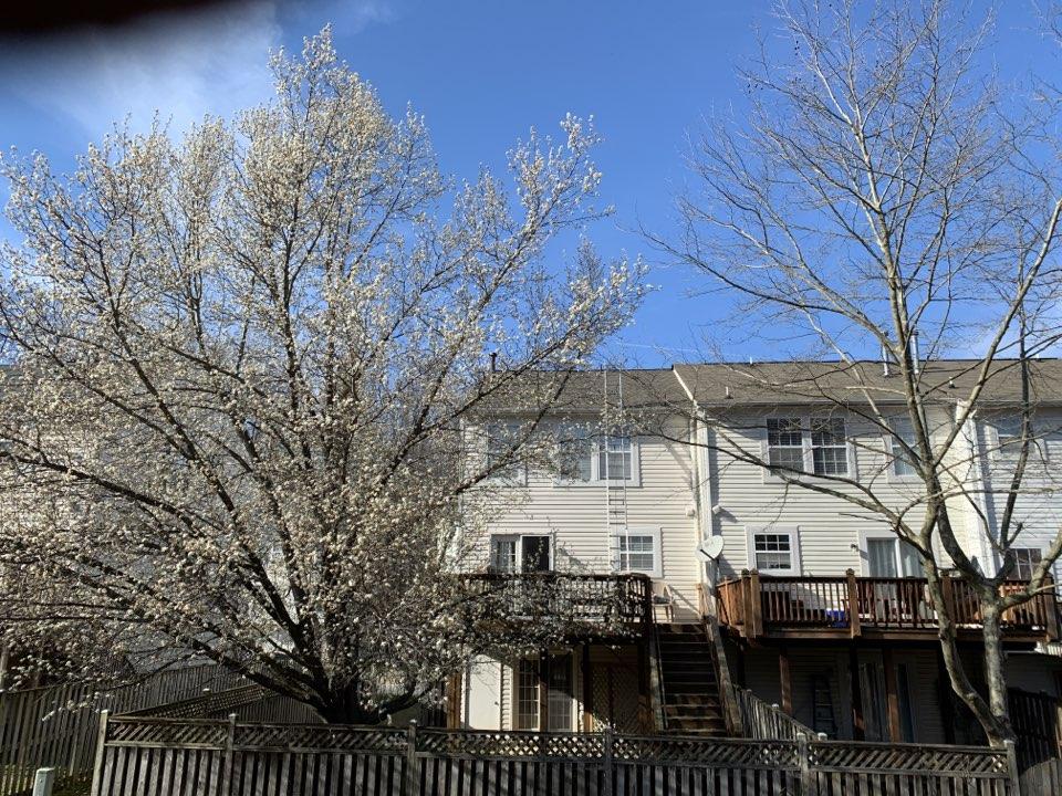 Upper Marlboro, MD - Replacing shingle roof withTimberline HD Weathered Wood.