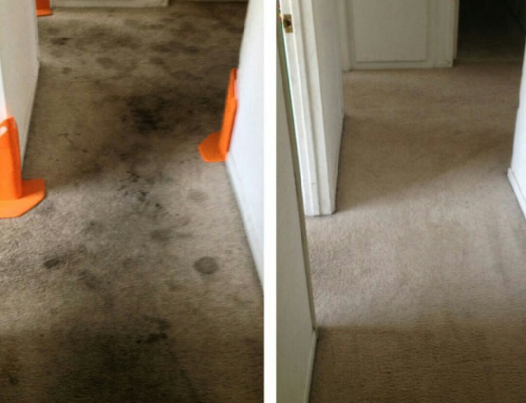 Portsmouth, VA - Chem-dry carpet restoration at its best!!!