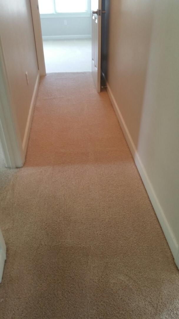Newport News, VA - Carpet restoration and PURT treatment