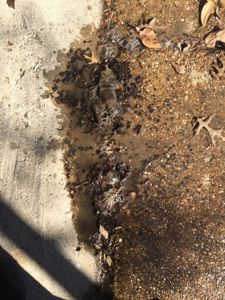 Heath, TX - Possible slab leak. Leak detection needed. Found slab leak in garage floor. Tunnel under garage to repair cold water slab leak on main line.