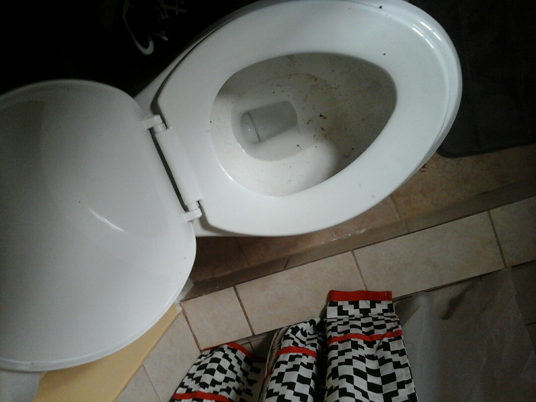 Dallas, TX - Toilets will not flush