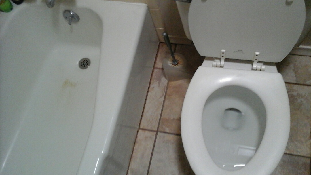 Dallas, TX - Toilet and tub stopped up