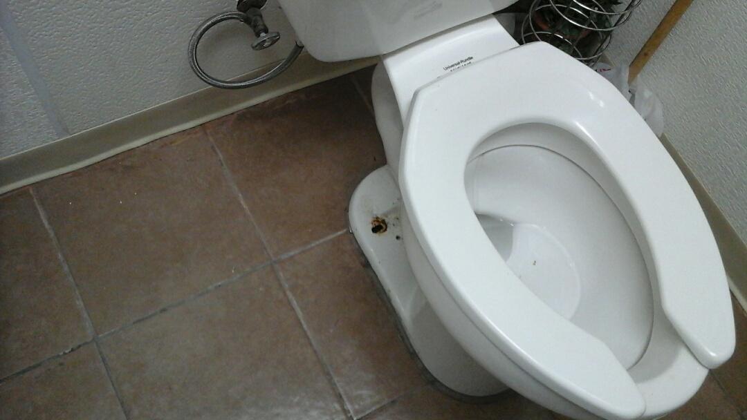 Midlothian, TX - Toilet is smelling