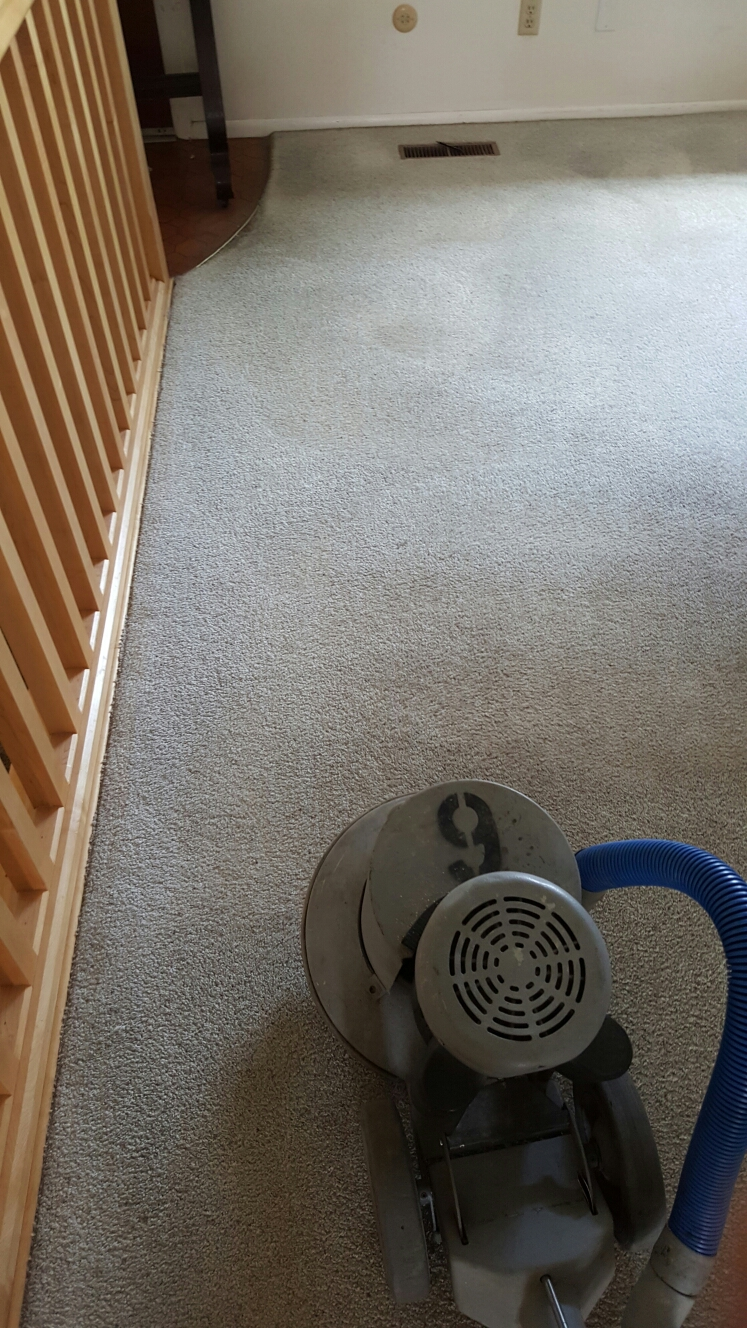 Provo, UT - Carpet cleaning provo utah, cleaning really heavy traffic ways, and heavy stain on really old carpet. Restoring the old carpet back to new