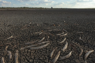 Dried up lake and riverbed in Texas, drough aggravated by global warming