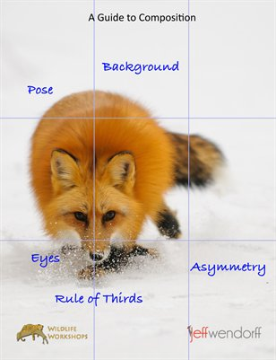 Photography Composition - The Basics
