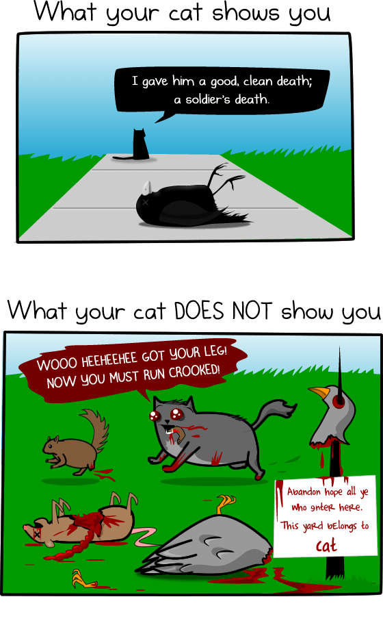 How much do cats actually kill wu153.wordpress.com