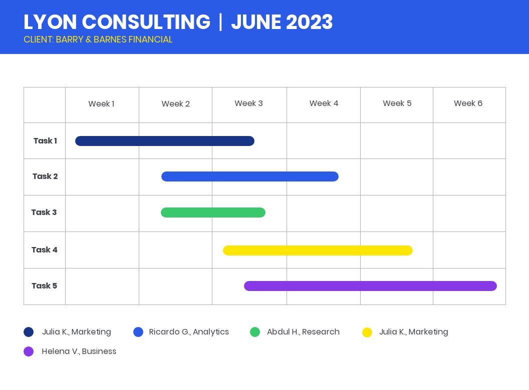 Consultant Project Gantt Chart Template