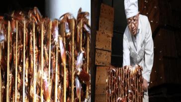 la granja de cucarachas en China