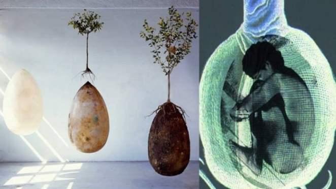 Qué es un entierro ecológico - entierro en forma de huevo