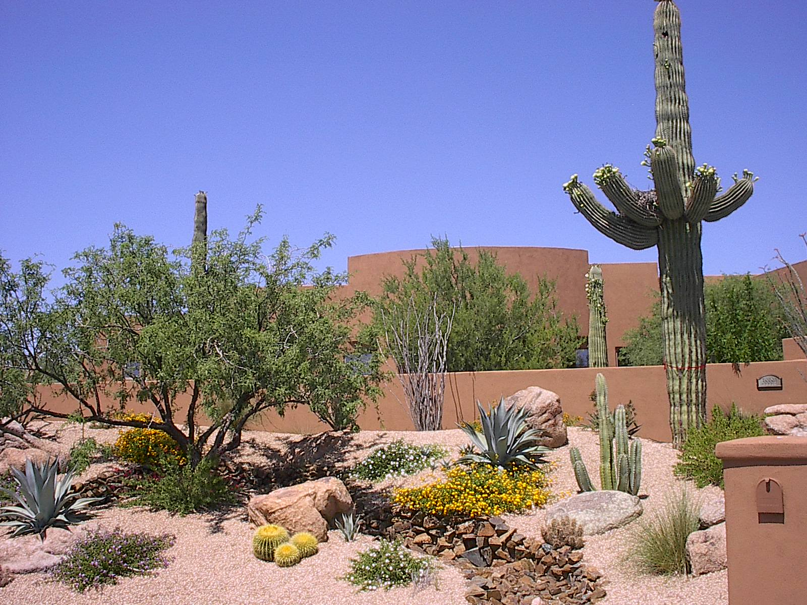 Featured Project Gallery on Desert Landscape Ideas For Backyards id=94304