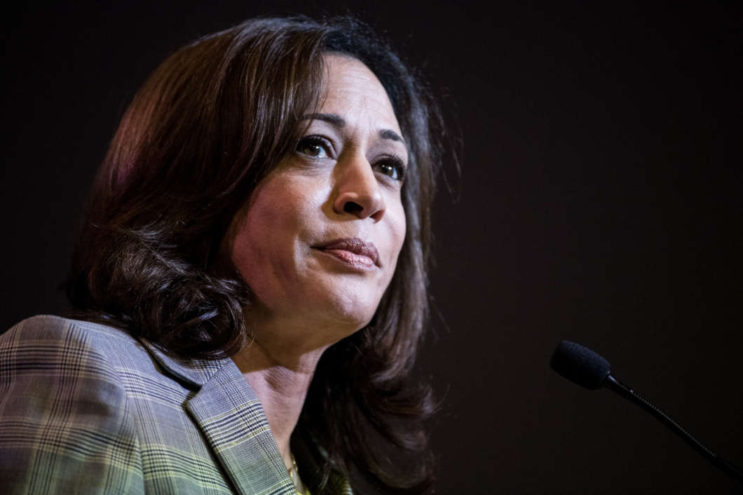 Democratic presidential candidate Sen. Kamala Harris of California addresses the crowd at the 2019 South Carolina Democratic Party State Convention. Sean Rayford/Getty Images