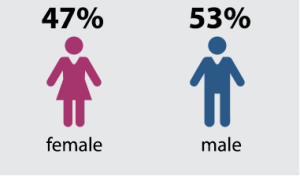 47% female - 53% male