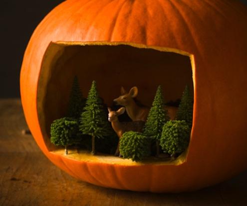 Pumpkin Diarama