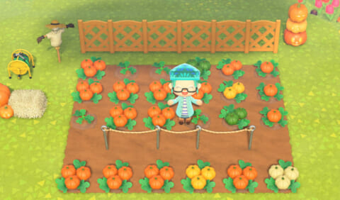 森 かぼちゃ あつ