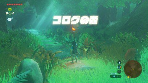 迷い の ゼルダ オブザ ワイルド の 森 伝説 ブレス 迷いの森エリアのマップ・コログ