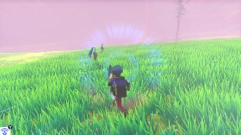 ワイルドエリアの草むら