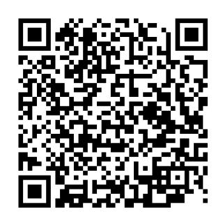 サンムーン カイリューのqrコード ポケモンsm 攻略大百科