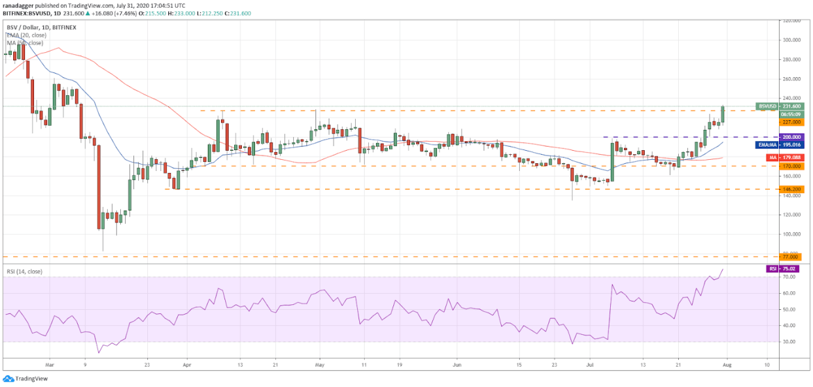 BSV/USD daily chart