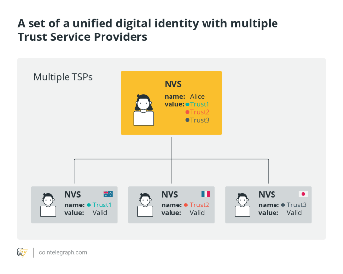 A set of unified digital identity with multiple Trust Service Providers