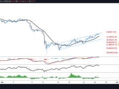 Monero (XMR) Quietly Gains 99.5% as Bitcoin Price Consolidates