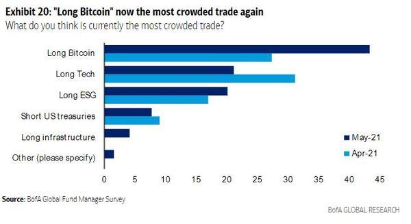 Bitcoin: długa pozycja na BTC najpopularniejsza wśród menedżerów według BofA