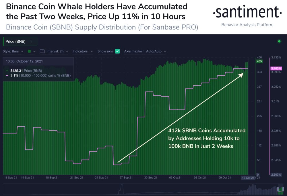 BNB accumulation data from whales