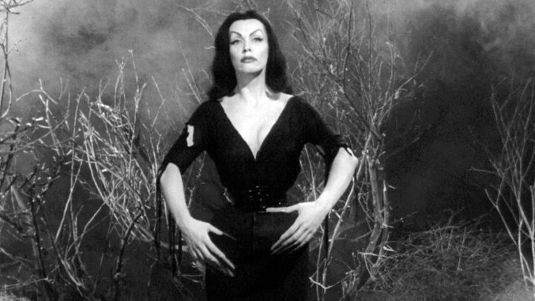 Image result for plan 9 from outer space