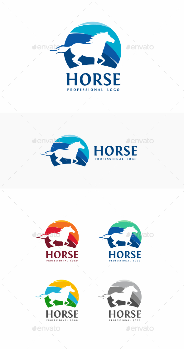 Race Horse Veterinary Graphics
