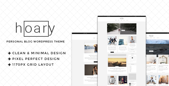 preview.  large preview - Hoary - Minimal Blog WordPress Theme