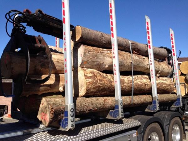 vrachtwagen boomstammen
