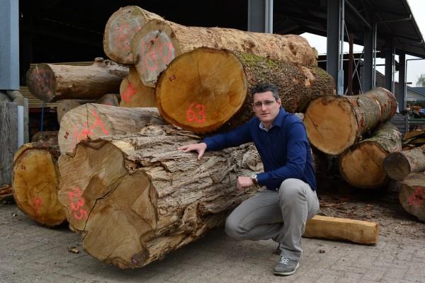 boomstammen van boomstamtafel.nl