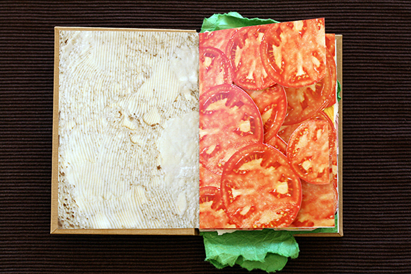 sandwich_book_picame2