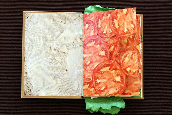 sandwich_book_picame2