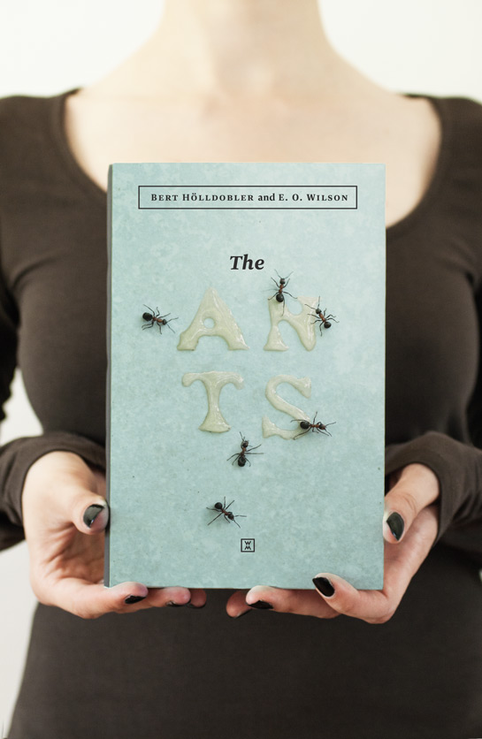 the-ants-redesign-booketing-01