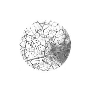 disegno a matita 4, 2020 - matita su carta - 12 x 12 cm