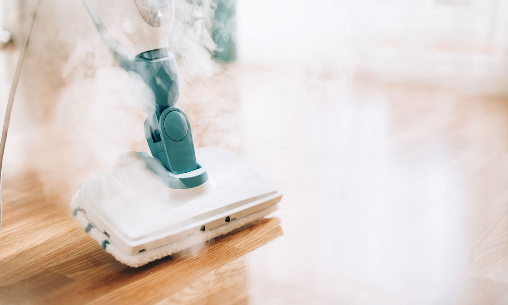 can steam cleaners kill household germs