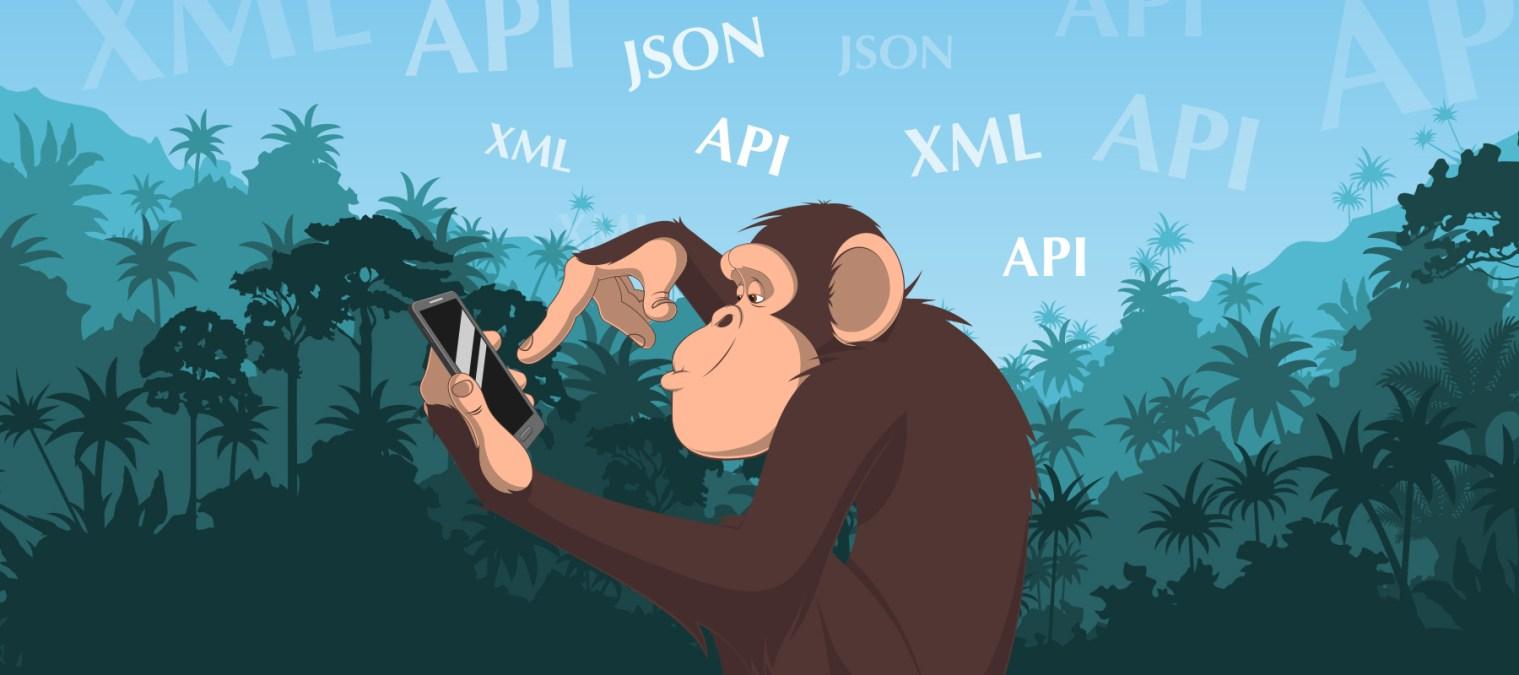 The Jargon Jungle: Make like an API-man