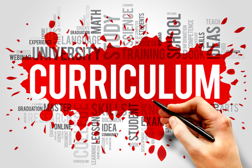 Image result for national curriculum primary