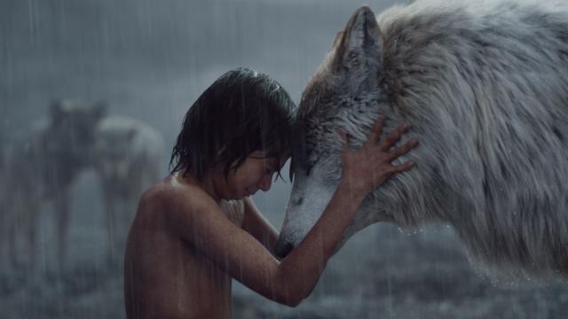 A trama gira em torno do jovem Mogli, garoto de origem indiana que foi criado por lobos em plena selva, contando apenas com a companhia do urso Baloo e da pantera negra Bagheera, sem nenhum contato com humanos. O menino é amado pelos animais, mas visto como uma ameaça pelo temido tigre Shere Khan, que está decidido a matá-lo. Com a família de lobos ameaçada, Mogli decide se afastar. Baseado na série literária de Rudyard Kipling.