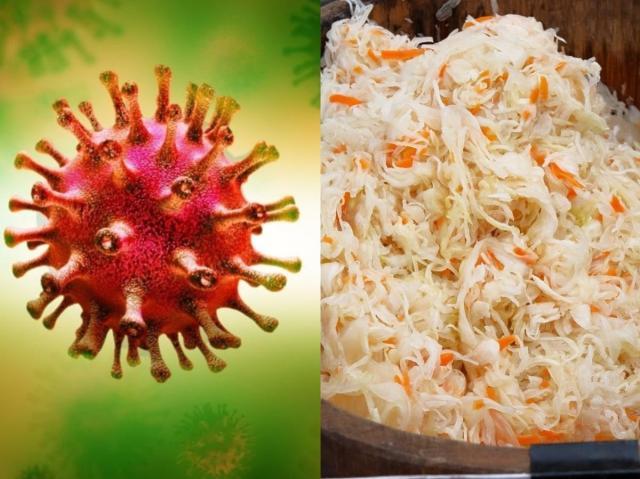 Kapusta kiszona chroni przed koronawirusem? Wyniki badań zaskoczyły nawet samych naukowców