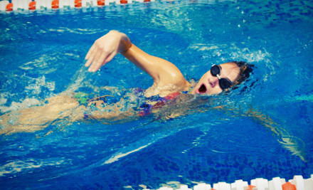 Sigma Performance Swimming Lessons Groupon
