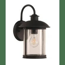 canarm iol124bk treehouse single light