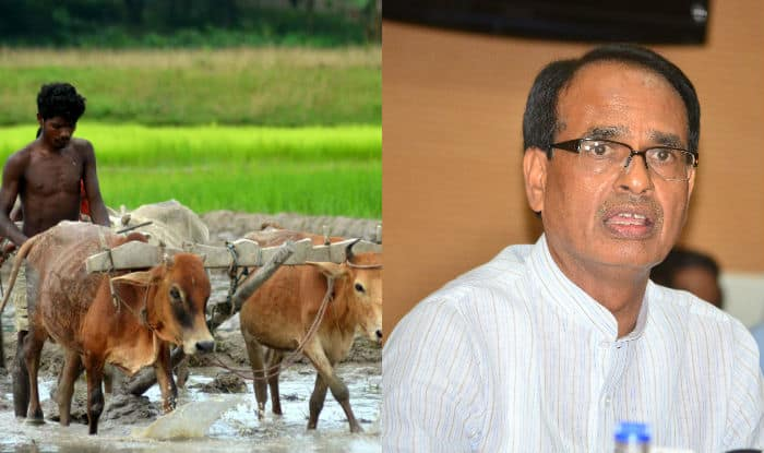 Image result for shivraj singh with farmers