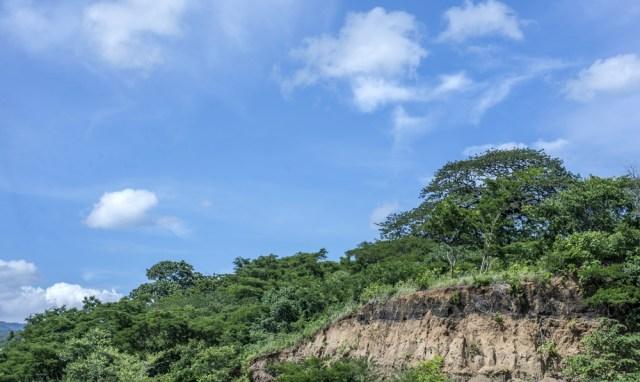 Costado norte del cerro Mokorón visto desde el parqueo elevado del Estadio Nacional de Futbol. El Mokorón es el único bosque denso del casco urbano de Managua. LA PRENSA / ÓSCAR NAVARRETE