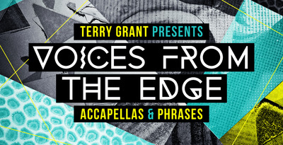 Terry Grant Voices From The Edge