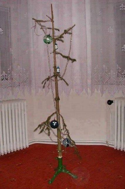 Sad Christmas Trees Weirdest Holiday Decorations 2014