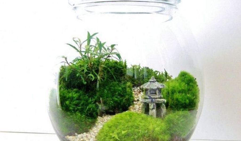 Terrarium Theme Ideas Home Garden Improvement Design Collaboration