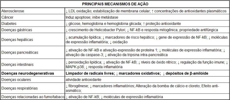 PODER ANTIOXIDANTE DA CÚRCUMA SOBRE A DEPRESSÃO - Brasil Escola