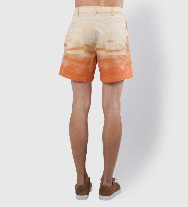 Warriors of Radness Sunny Hallucinations Shorts